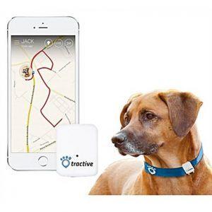 collar para perros Tractive